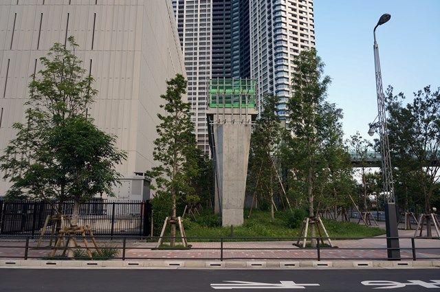 新豊洲キューブ ペデストリアンデッキ 2015.7.20