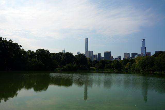 Central Park NTV 2015 Summer