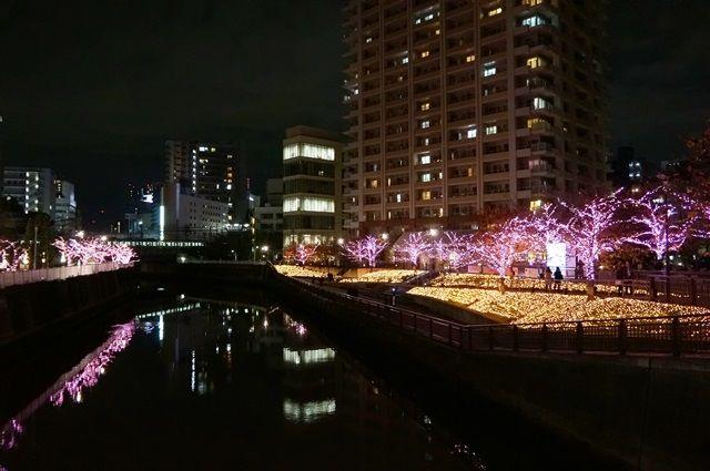 目黒川みんなのイルミネーション2015