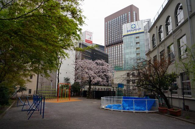 中央区立泰明小学校の桜 2016.4.2