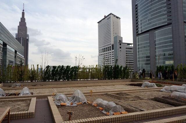 バスタ新宿 屋上農園 2016.4.9