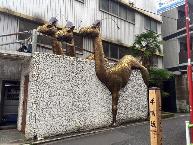 牛鳴坂のラクダ