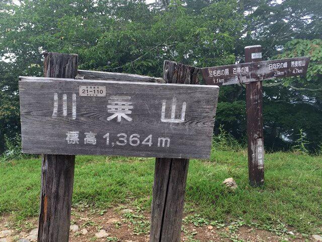 川苔山 2016年8月中旬