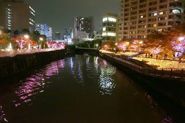 「目黒川みんなのイルミネーション2016」 2016.11.19