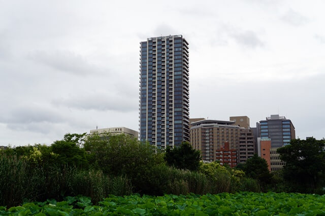 「Brillia Tower (ブリリアタワー) 上野池之端」 2019.7.6