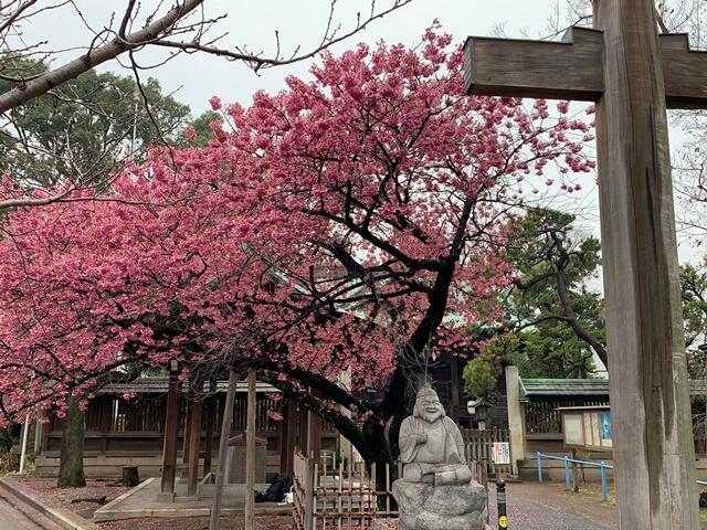 荏原神社 2020.2.16